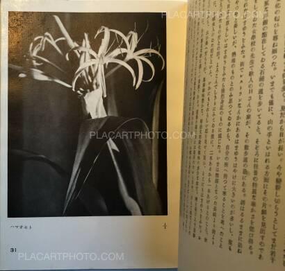 Koshiro Onchi,Hakubutsushi: Zuihitsu, Shashin