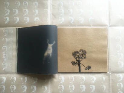 Miho Kajioka,SO IT GOES  (ONLY 60 COPIES) SIGNED!