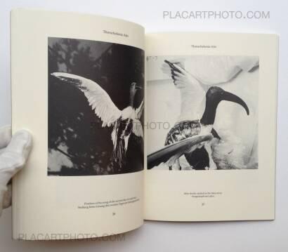 Joan Fontcuberta ,Dr. Ameisenhaufen's Fauna