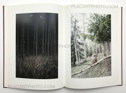 Jitka Hanzlova,Forest